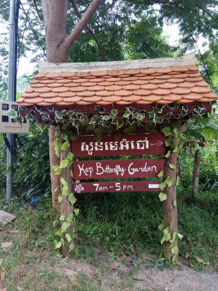 Kep butterfly garden