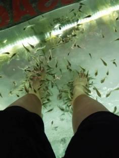 Night market fish massage
